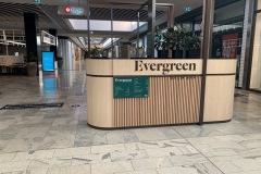 Evergreen Brow Bar